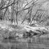 Gila River | Arizona | 12.19.20