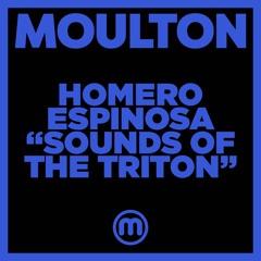 Sounds Of The Triton (House Mix)