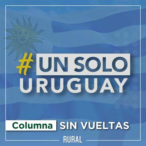Sin Vueltas -columna- #UnSoloUruguay (lunes 13/09)