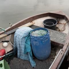 A Fisherman has gone - 20/4/2020 - Makholma Shore