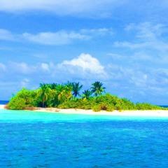 RiZLiX - Tropical Dreams