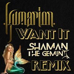Shaman Remix's