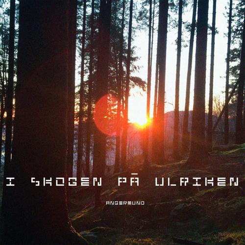 I skogen på Ulriken