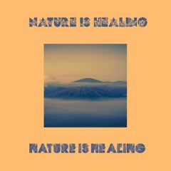 Q-Bale - Nature is Healing