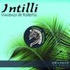 Intilli (Dj Daro Remix)