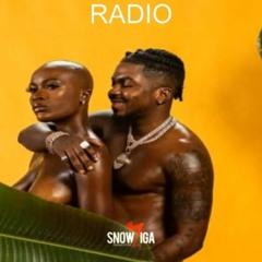"""Afrobeat instrumental 2021 """"RADIO"""" (Joeboy x Kojo fundz x Davido Type beat) UK AFROBEAT Type Beat"""