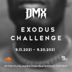 Exodus Contest