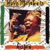 Mandela (Bring Him Back Home!)