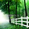 Calm Piano Background Music