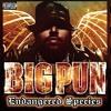 John Blaze Fat Joe featuring Big Pun, Nas, Raekwon, Jadakiss