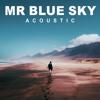 Mr Blue Sky (Acoustic)