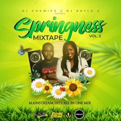 DJ Chemics x DJ Kayla G - SPRINGNESS Vol. 3 (2020 MAINSTREAM Hits Mixtape) @RIDDIMSTREAM