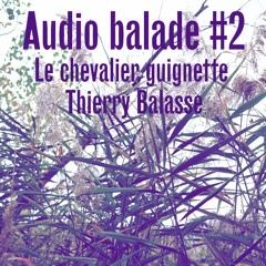 Le chevalier guignette - Thierry Balasse