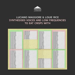 TR040 - Luciano Maggiore & Louie Rice - 'Synthesised voices...' [sample]