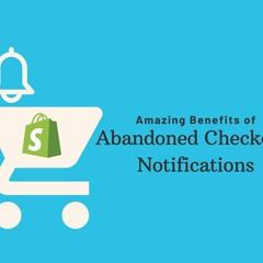 Amazing Benefits Of Abandoned Checkout Notifications