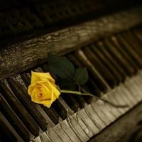 Aifel - Piano Relax (improvisation) [Episode 1]