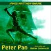 Kapitel 3: Peter Pan (Teil 1)