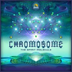Chromosome - The Spirit Molecule (Audiodiodact Remix)Teaser