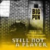 Still Not a Player (Remix) (Instrumental)
