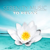 Well Being (Hotel Spa Music)