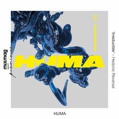 PREMIERE: Huma - Irreducible [Hedonic Reversal]