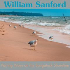Parting Ways on the Saugatuck Shoreline