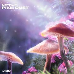 Netrum - Pixie Dust [NCS10 Release]