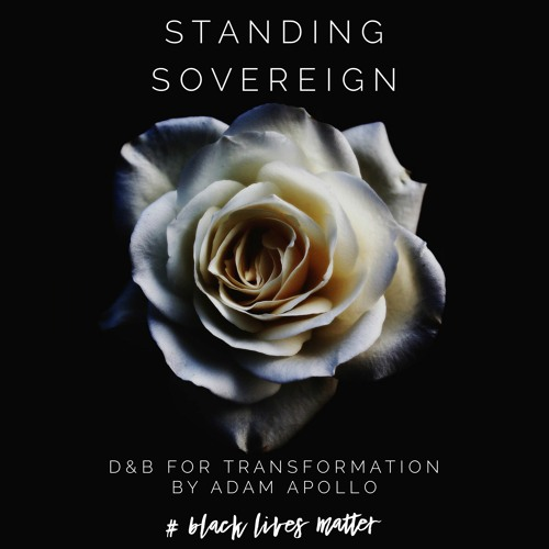 AAA - Standing Sovereign - DNB for Transformation