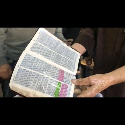 Ep. 309 - The Foiled Biblical Oil Scheme