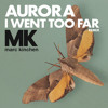 I Went Too Far (MK Extended Remix) mp3