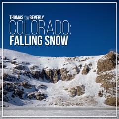 AMB39 Colorado: Falling Snow | SFX Library Demo