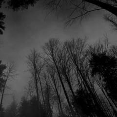 Hiraeth - LostRemains Mp3