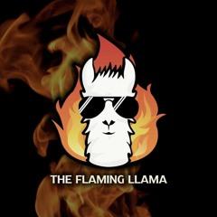 DJ El Nino - Live From The Flaming Llama (Hartford, CT) (7/16/21)