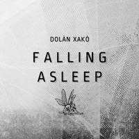 FALLING ASLEEP - FREE DDL ON https://dolanxako.bandcamp.com/album/falling-asleep