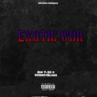 Big 7-30 ft. 60ShotBlake - Exotic Wok