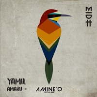 Yamil - Amaru (Amine'O Vocal Mix)
