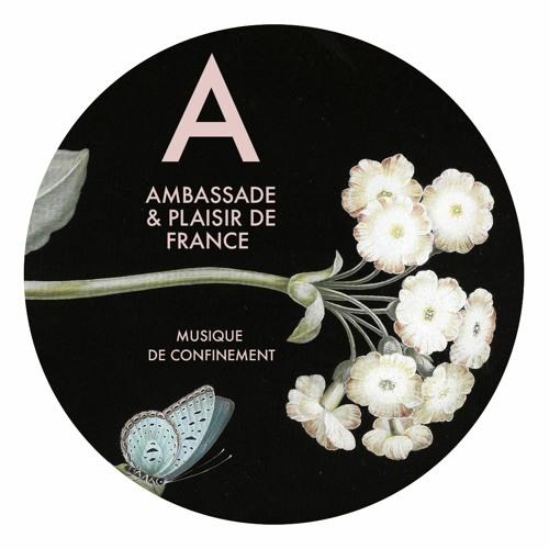 Plaisir de France musique douce pour Confiner Ambassade Excellence #5
