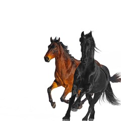 Old Town Road (Remix) [feat. Billy Ray Cyrus]