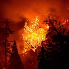 1blnk x RaveOnRa - The World Is Burning