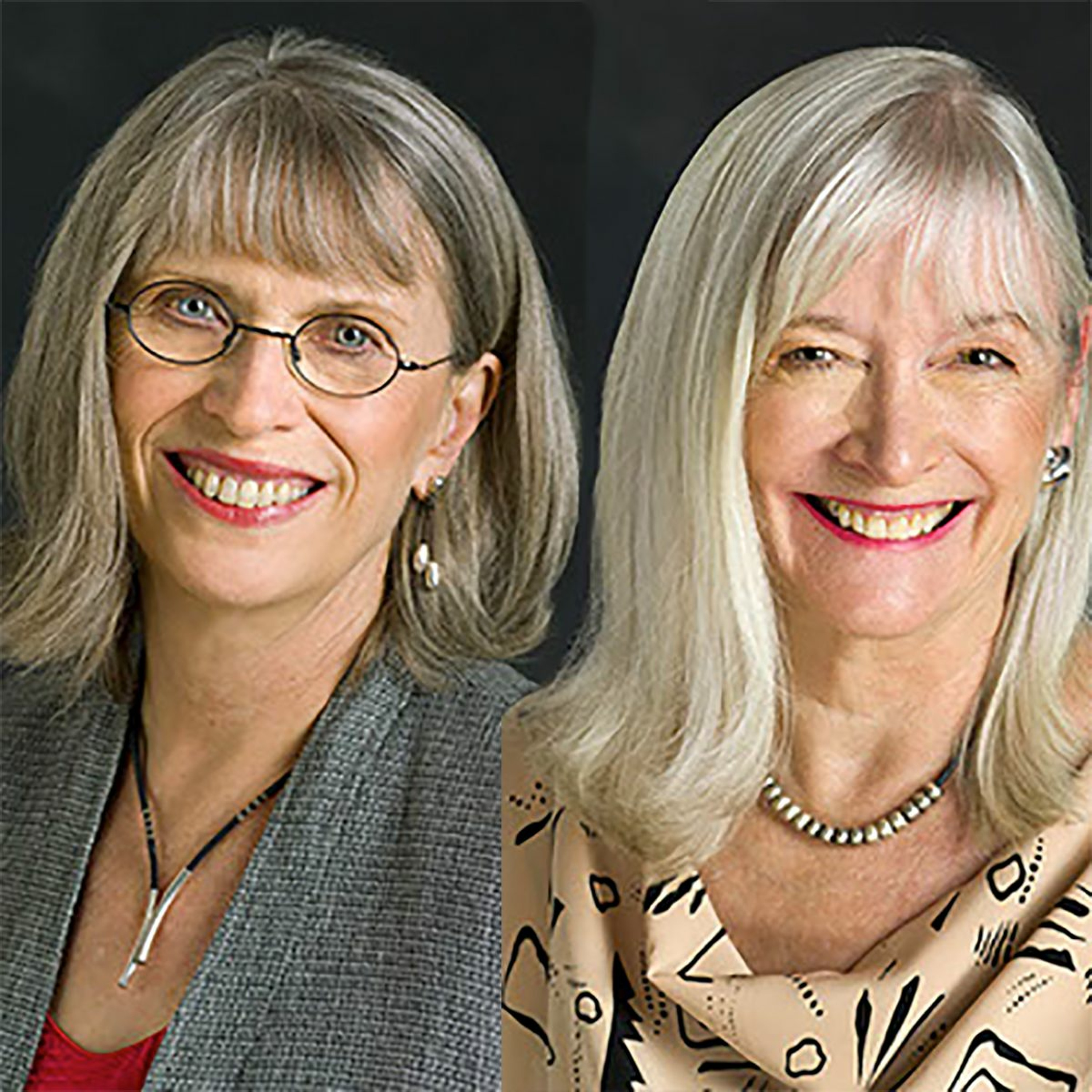 Marilyn Darling and Heidi Sparkes Guber on Emergent Learning