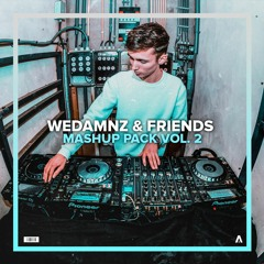 WeDamnz & Friends Mashup Pack Vol. 2 (DL)