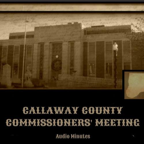 August 2020 Commissioner Meetings