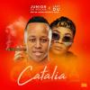 Catalia (feat. Mellow, Mr JazziQ & Sleazy)