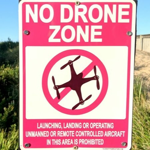 Big Win for Drones! Ep. 6.296