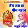 Download Teri Jai Ho Bheem Mahan Mp3
