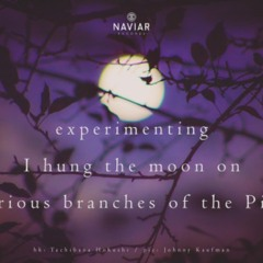 naviarhaiku391: experimenting