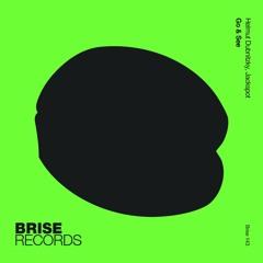 PREMIERE : Helmut Dubnitzky & Jackspot - Go & See (Original Mix) [Brise Records]