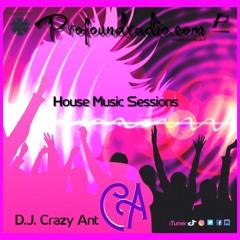 Profoundradio Mix #133 Tech House