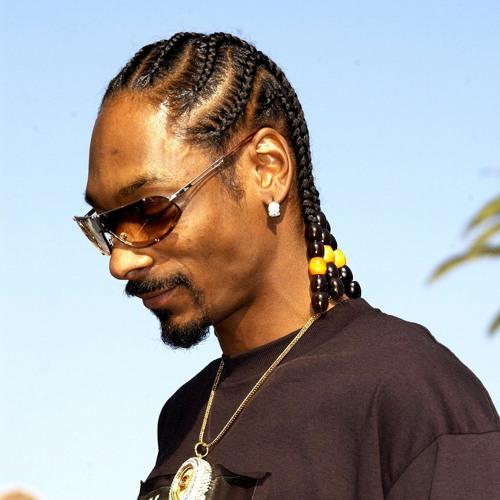 Snoop Dogg - lose certain homies (lofi) Mix. Quinten van Ommen (Prod. Homage)