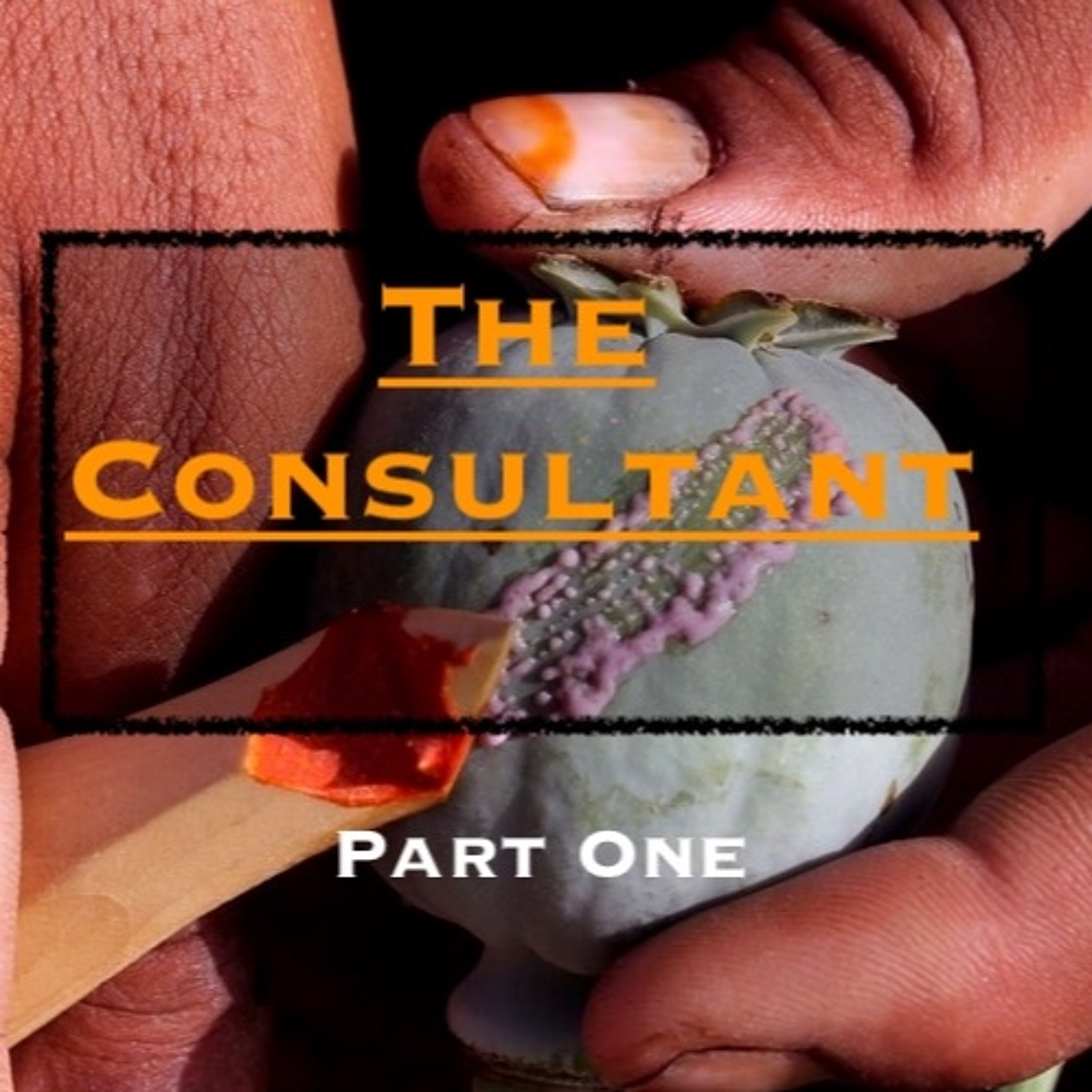 Ep43. 'The Consultant - An International Special Services Provider' - Part 1